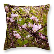 Pink Aplle Blossoms Of Spring Time Throw Pillow