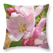 Pink Apple Blossoms Art Prints Spring Trees Baslee Troutman Throw Pillow