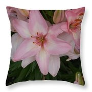 Pink Asiatic Lilies 1 Throw Pillow