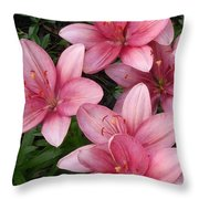 Pink Asiatic Lilies 2 Throw Pillow
