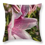 Pink Azalea Beauty Throw Pillow