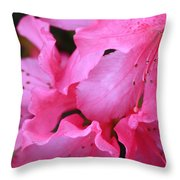 Pink Azalea Drama Throw Pillow