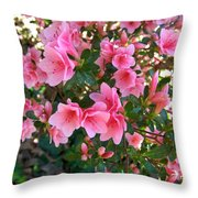 Pink Azaleas IIi Throw Pillow