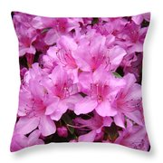 Pink Azaleas Summer Garden 6 Azalea Flowers Giclee Art Prints Baslee Troutman Throw Pillow