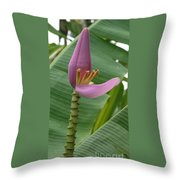 Pink Banana Flower Throw Pillow