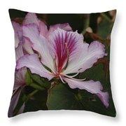 Pink Bauhinia Flower Throw Pillow