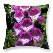 Pink Bell Flowers, Close-up. Foxglove 02 Throw Pillow