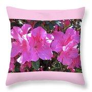Pink Bevy Of Beauties Throw Pillow