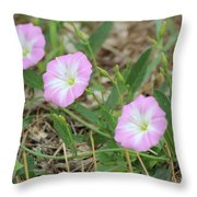Pink Bindweed Throw Pillow