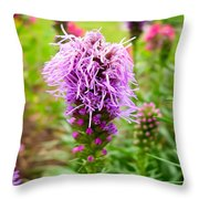 Purple Blazing Star 01 Throw Pillow