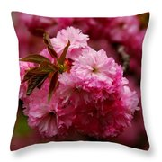 Pink Blooms Throw Pillow