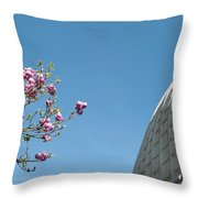 Pink Blossom And Glasshouse Throw Pillow