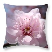 Pink Blossom Nature Art Prints 34 Tree Blossoms Spring Nature Art Throw Pillow