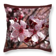 Pink Blossoms 033014c Throw Pillow