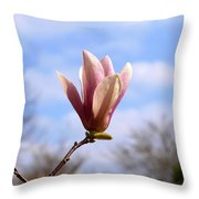 Pink Blossoms And Fluffy Clouds Throw Pillow