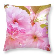 Pink Blossoms Art Prints Canvas Spring Tree Blossoms Baslee Troutman Throw Pillow