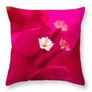 Pink Bougainvillaea Throw Pillow