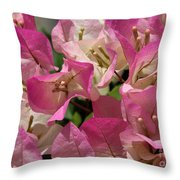 Pink Bougainvillea Throw Pillow