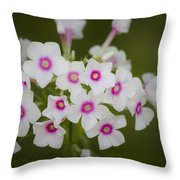 Pink Bright Eyes Garden Phlox Throw Pillow