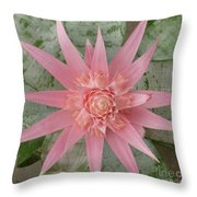 Pink Bromeliad Throw Pillow