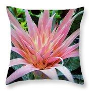 Pink Bromeliad Throw Pillow