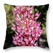 Bromeliads Flowers Throw Pillow
