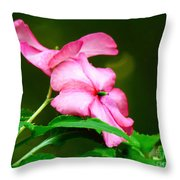 Pink Busy Lizzies Throw Pillow