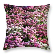 Pink Button Pom Flowers Throw Pillow