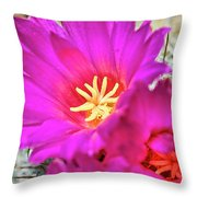Pink Cacti Flowers Throw Pillow