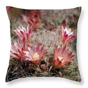 Pink Cactus Flowers 2 Throw Pillow