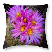 Pink Cactus Flowers Square  Throw Pillow