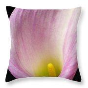 Pink Calla Lily Close Up Throw Pillow