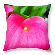 Pink Calla Lily Macro Flower Art Print Lilies Baslee Troutman Throw Pillow