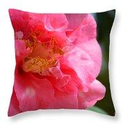 Pink Camelia Closeup Throw Pillow