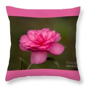 Pink Camellia 3 Throw Pillow