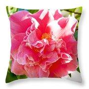 Pink Camellia At Pilgrim Place In Claremont-california  Throw Pillow