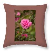 Pink Camellia 2 Throw Pillow