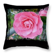 Pink Camellias With Fence And Framing Throw Pillow