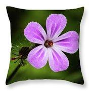 Pink Campion Throw Pillow