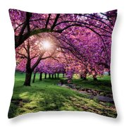 Pink Canopy Throw Pillow