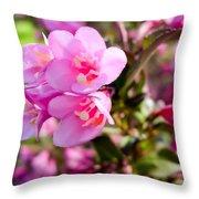 Pink Cardinal Bush Flowers Throw Pillow