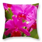 Pink Cattleya Orchids Throw Pillow by Allan Seiden - Printscapes