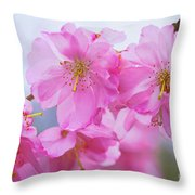 Pink Cherry Blossom Cluster Throw Pillow
