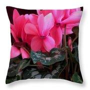 Pink Cyclamen 1 Throw Pillow
