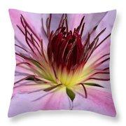 Pink Clematis Closeup Throw Pillow
