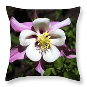 Pink Columbine Throw Pillow