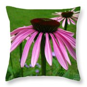 Pink Cone Flowers Throw Pillow