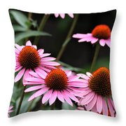 Pink Coneflowers Throw Pillow