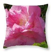 Pink Confederate Rose Throw Pillow