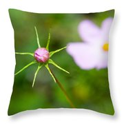Pink Cosmos Bud Throw Pillow
